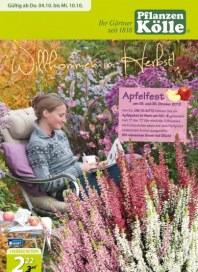 Pflanzen Kölle Willkommen im Herbst Oktober 2012 KW40