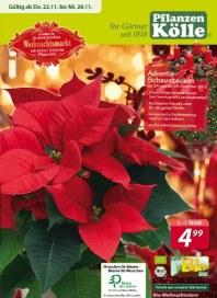Pflanzen Kölle Der Weihnachtsmarkt bei Uns November 2012 KW47