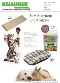 Knauber Freizeitmarkt Zum Kuscheln und Kratzen Februar 2013 KW09