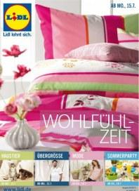 Lidl Aktueller Wochenflyer Juli 2013 KW29 6