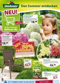 Dehner Aktuelle Angebote Juli 2013 KW30 1