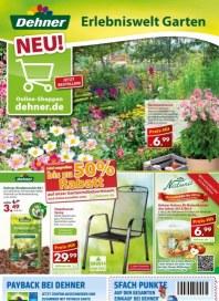 Dehner Aktuelle Angebote September 2013 KW36