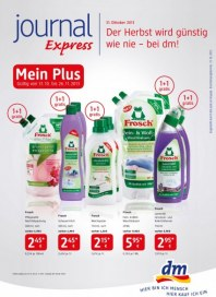 DM DM Journal Express Angebote bis 12.11.2013 Oktober 2013 KW44