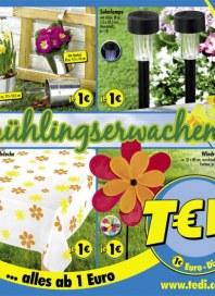 Tedi Frühlingserwachen März 2014 KW14
