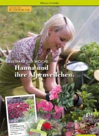 Pflanzen Kölle Pflanzen mit Liebe September 2014 KW37