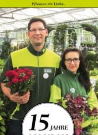 Pflanzen Kölle 15 Jahre Borgsdorf September 2014 KW39