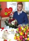 Pflanzen Kölle Pflanzen mit Liebe Februar 2016 KW06-Seite5