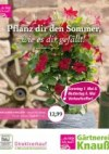 Gärtnerei Knauß & Söhne GbR Pflanz dir den Sommer, wie es dir gefällt April 2016 KW16