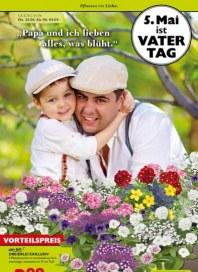 Pflanzen Kölle Pflanzen mit Liebe April 2016 KW17 2
