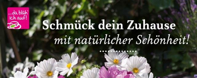 Landgärtnerei Beier Schmück dein Zuhause Mai 2016 KW22