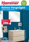 Hammer Reines Vergnügen Juni 2016 KW24