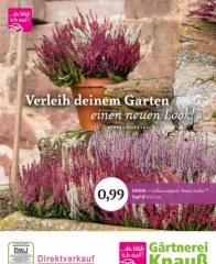 Gärtnerei Knauß & Söhne GbR Verleih deinem Garten einen neuen Look September 2016 KW36