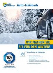 Meisterhaft Autoreparatur Wir machen Sie fit für den Winter September 2017 KW36 20