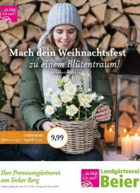 Landgärtnerei Beier Mach dein Weihnachtsfest zu einem Blütentraum November 2017 KW46
