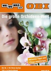 OBI Orchideen-Welt März 2012 KW10