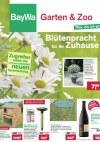 BayWa Blütenpracht für Ihr Zuhause!-Seite1