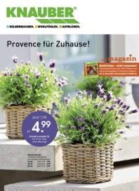 Knauber Freizeitmarkt Provence für Zuhause Mai 2012 KW19