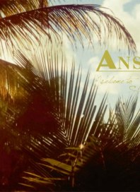 Anson's Insider-Journal Mai 2012 KW22