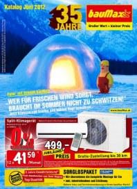 bauMax Großer Werker + kleiner Preis Juni 2012 KW22