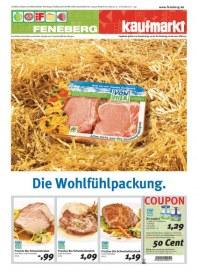 Feneberg Die Wohlfühlpackung Juni 2012 KW24