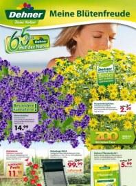 Dehner Meine Blütenfreunde Juni 2012 KW25