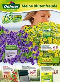 Dehner Meine Blütenfreude Juni 2012 KW25
