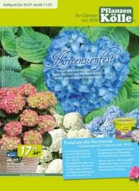 Pflanzen Kölle Hortensienfest Juli 2012 KW27