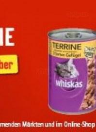 Fressnapf Angebot der Woche Oktober 2012 KW41
