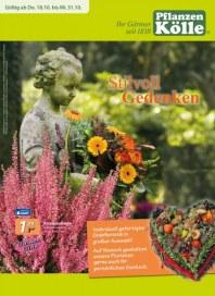 Pflanzen Kölle Stilvoll Gedenken Oktober 2012 KW42
