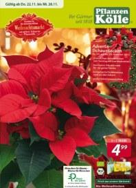 Pflanzen Kölle Besuchen Sie den stimmungsvollen Weihnachtsmarkt November 2012 KW47