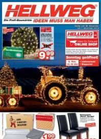 Hellweg Aktuelle Angebote November 2012 KW48 1