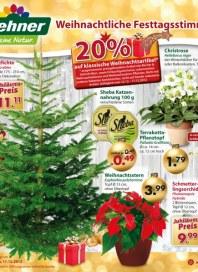 Dehner Weihnachtliche Festtagsstimmung Dezember 2012 KW50