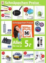 Müller Haushalt Januar 2013 KW02