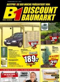 B1 Discount Baumarkt Aktuelle Angebote Februar 2013 KW08 3
