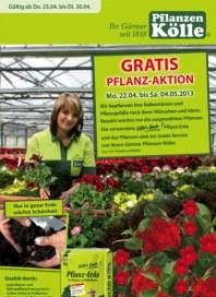 Pflanzen Kölle Gratis Pflanz-Aktion April 2013 KW17
