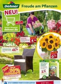 Dehner Aktuelle Angebote Juli 2013 KW27