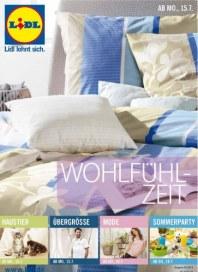 Lidl Aktueller Wochenflyer Juli 2013 KW29 8