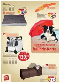 Zoo & Co. freunde-Angebote für Ihr Haustier Mai 2013 KW20
