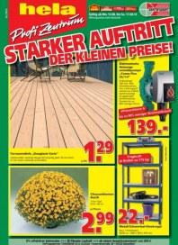 hela Profi Zentrum Baumarkt Angebote August 2013 KW33 1
