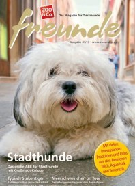 Zoo & Co. freunde-Magazin August 2013 KW33