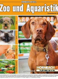 Hornbach Zoo und Aquaristik 08 / 2013 Hunde, Katzen, Nager und Vögel, Aquaristik und Terraristik Aug