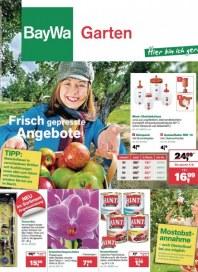 Baywa Bau- & Gartenmärkte Bay & Garten Angebote August 2013 KW35