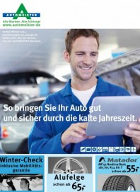 AUTOMEISTER Reifen & Felgen plus Winter Check September 2013 KW37