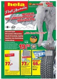 hela Profi-Zentrum Aktuelle Angebote November 2013 KW45