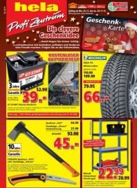 hela Profi-Zentrum Aktuelle Angebote November 2013 KW48 2