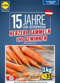 Lidl Lidl Angebote 02.01 - 08.01.2014 Januar 2014 KW01