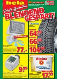 hela Profi Zentrum Baumarkt Angebote Januar 2014 KW03 2
