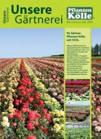 Pflanzen Kölle Unsere Gärtnerei März 2014 KW10
