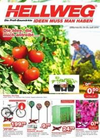 Hellweg Aktuelle Angebote April 2014 KW17 2