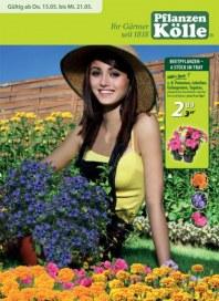 Pflanzen Kölle Ihr Gärtner seit 1818 Mai 2014 KW20